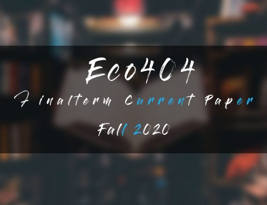 Eco404 Final term Current Paper Fall 2020