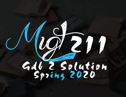 MGT211 Assignment 1 Solution Spring 2020